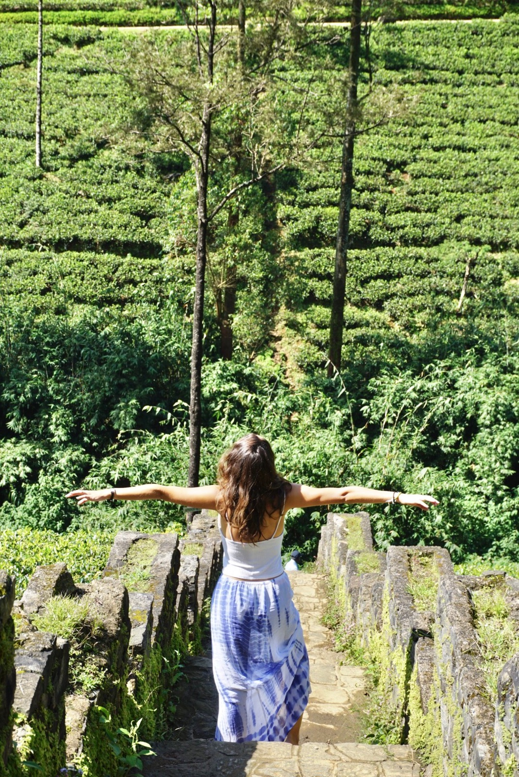 Exploring the tea plantations in Nuwara Eliya, Sri Lanka