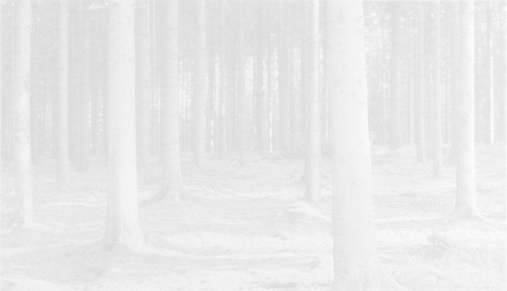 Image © Witho Worms.  Belgium 203,  2013. Three layered carbon print. Paper size: 13 3/4 x 21 1/2 inches. Image size: 11 1/8 x 19 inches. Unique. Courtesy of the artist and L. Parker Stephenson Photographs.