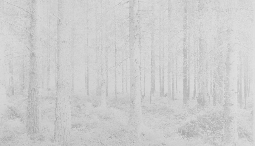 Image © Witho Worms.  Finland 009,  2013. Three layered carbon print. Paper size: 13 3/4 x 21 1/2 inches. Image size: 11 1/8 x 19 inches. Unique. Courtesy of the artist and L. Parker Stephenson Photographs.