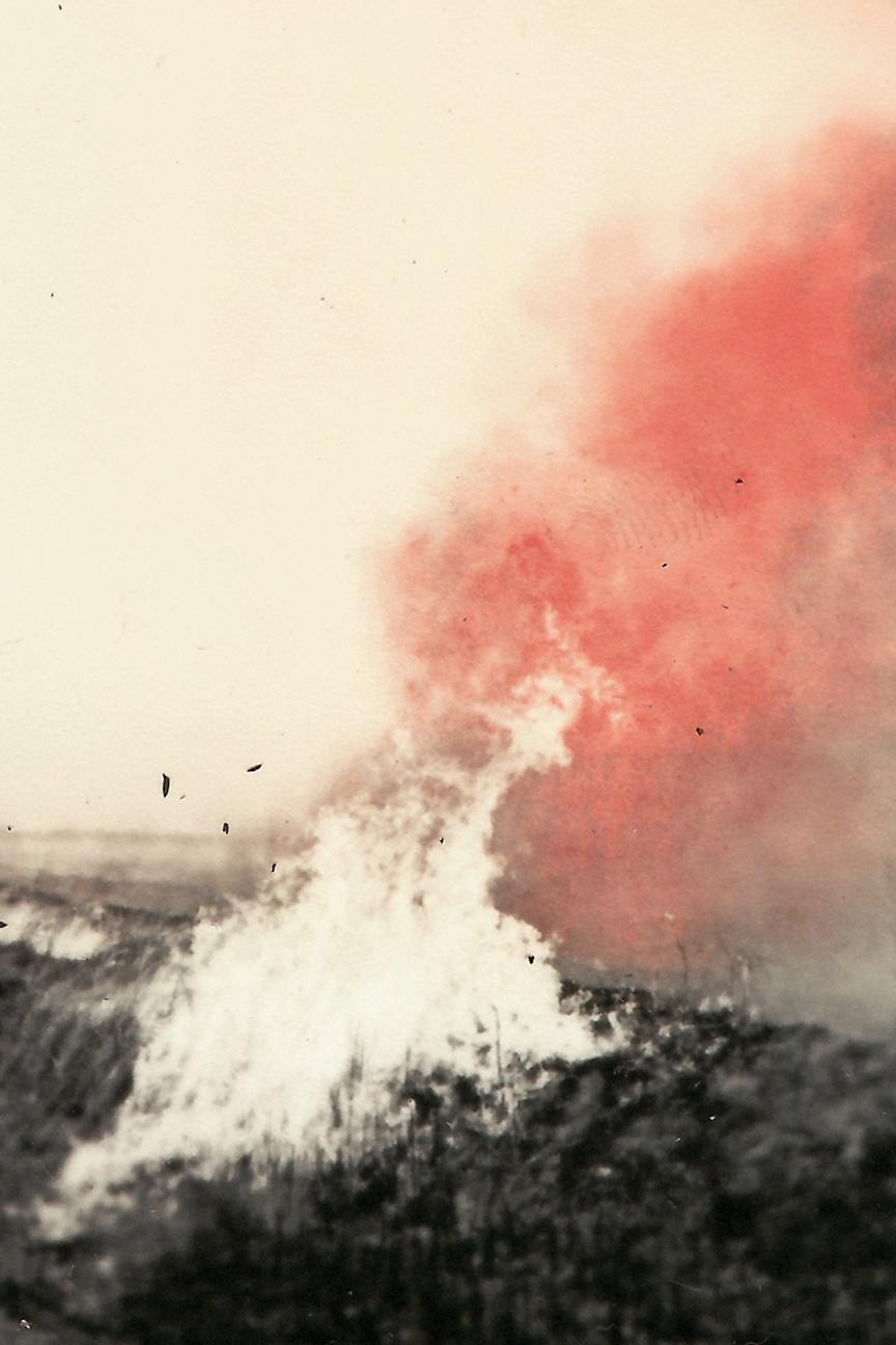 Image © Jordan Sullivan.  The Burning Season,  24x16inches, C-print. Courtesy of the artist.