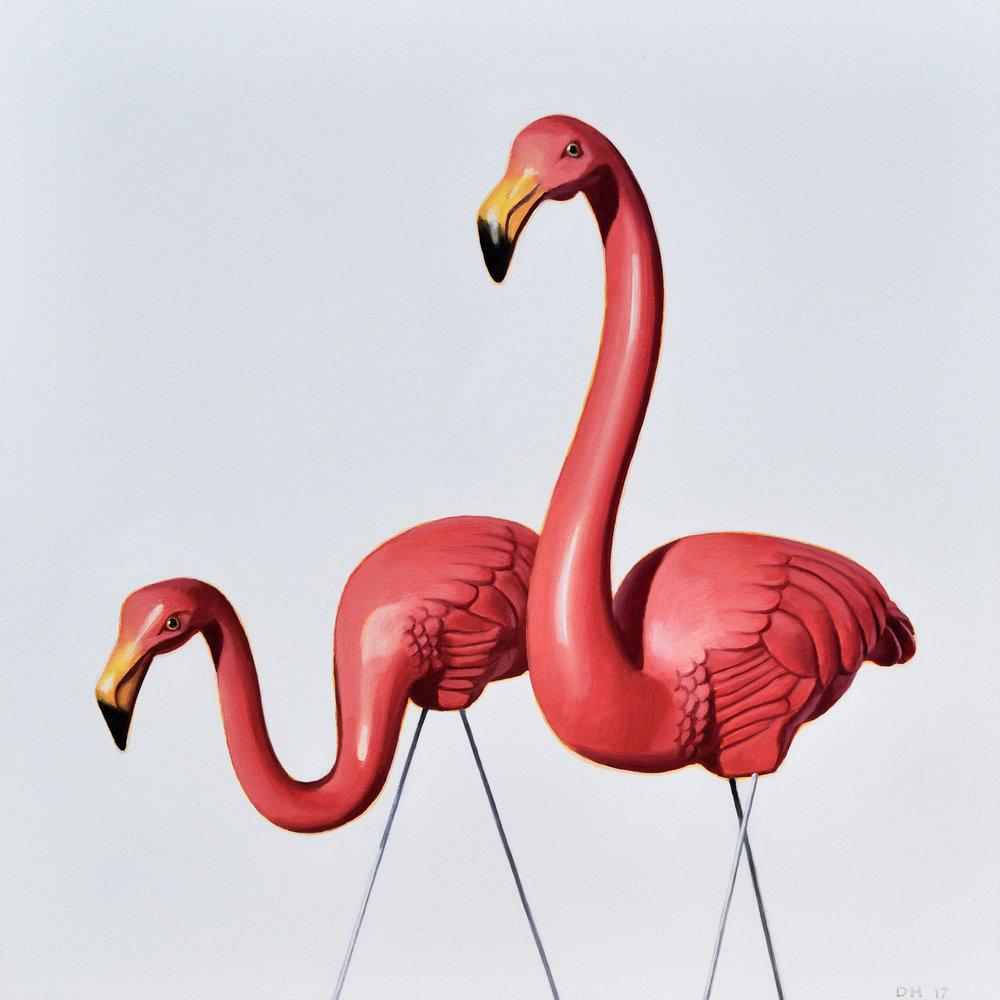 Flamingo Study 5
