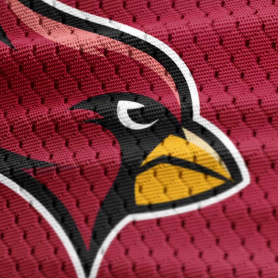 AZ Cardinals NFL COncept BRANDing