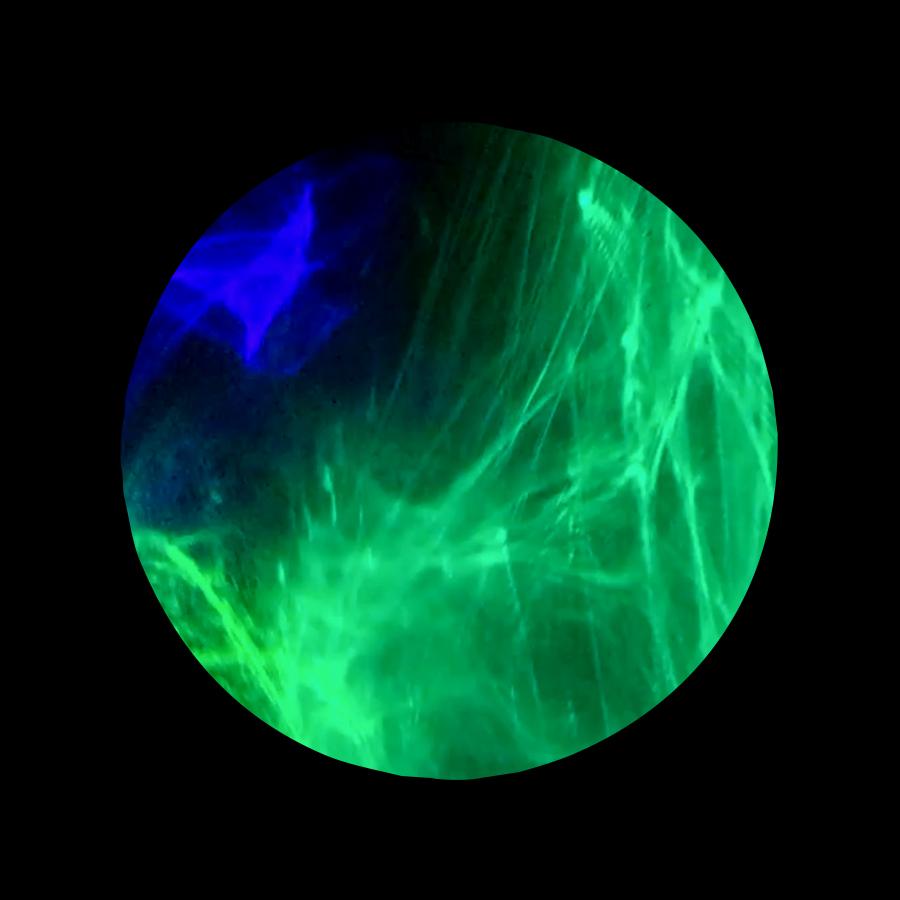 TODD_Aurora_Lasers-The Blackest Black Paint-Canvas-Acrylic_3ftX3ft_600.jpg