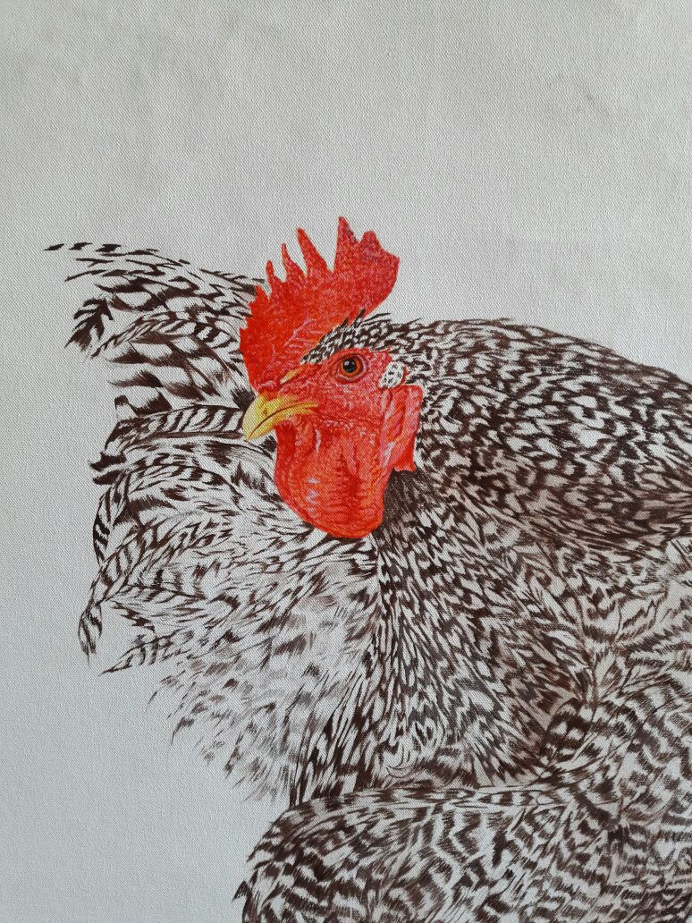 _1_vaidehikinkhabwala_rooster series (large)_3ftx3ft_$1,350.jpg