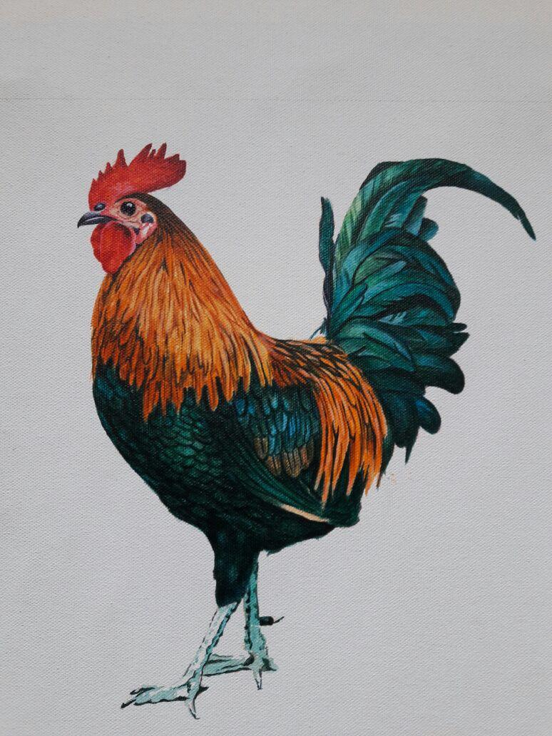 _04_vaidehikinkhabwala_roosterseries2_Acryliconcanvas_$850.jpg.jpg