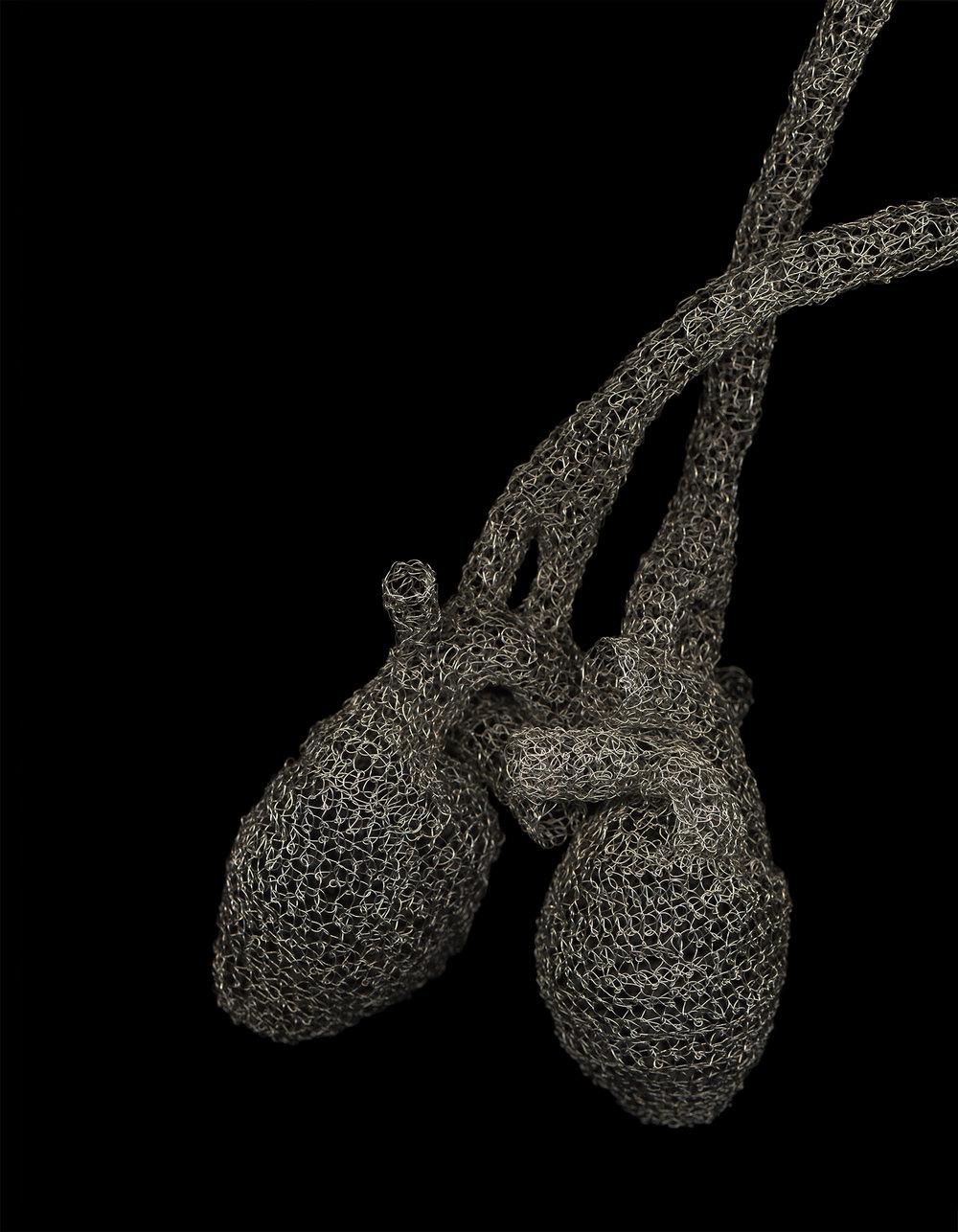 Ceres-Anne Mondro-_Cargiver_-11_x14_-digital print-2013-$600.00.jpg