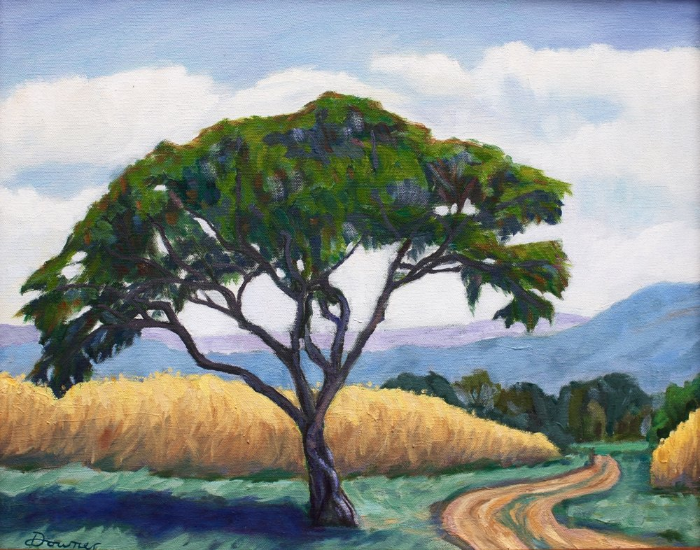 "Ceres-Elizabeth Downer Riker- ""A Tree in Etla"" - 16"" x 20"" - oil on canvas - 2017 - $500.jpeg"