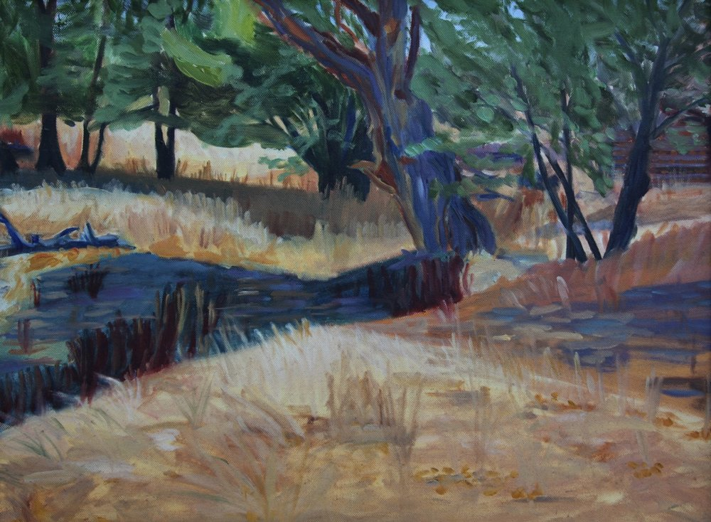 "Ceres-Elizabeth Downer Riker- ""An Old Tree"" - 18"" x 24"" - oil on canvas - 2016 - $800.jpeg"