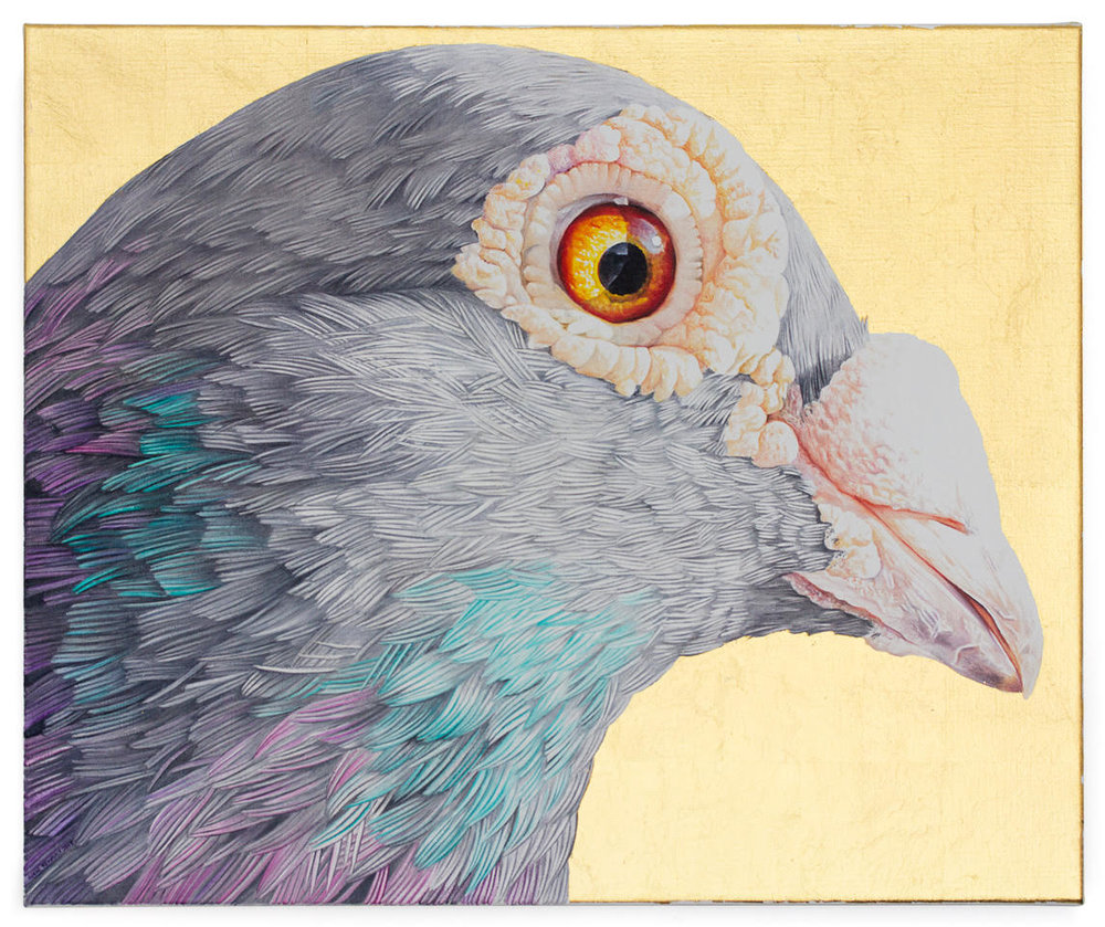 Clara Arts_Adele Renault_Tyson's Corner #2 - Racing Pigeon_2017_oil on linen and gold leaf_$3,000.jpg