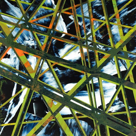 Daniel_Stuelpnagel-_Evolutionary_Convergence_-18x18_-acryliconwoodpanel-2018-$500.jpeg
