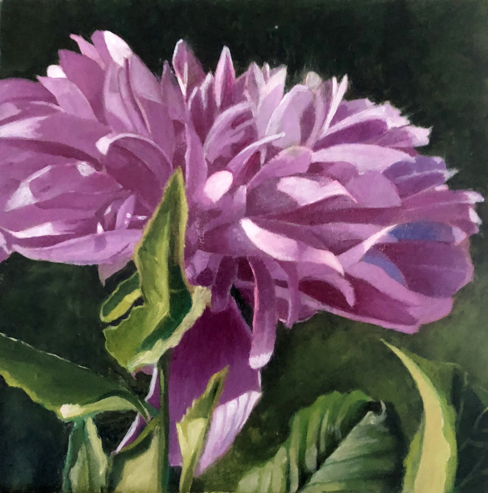 Dennis-Crayon-purple aster-8x8-oil-on-Panel.jpg