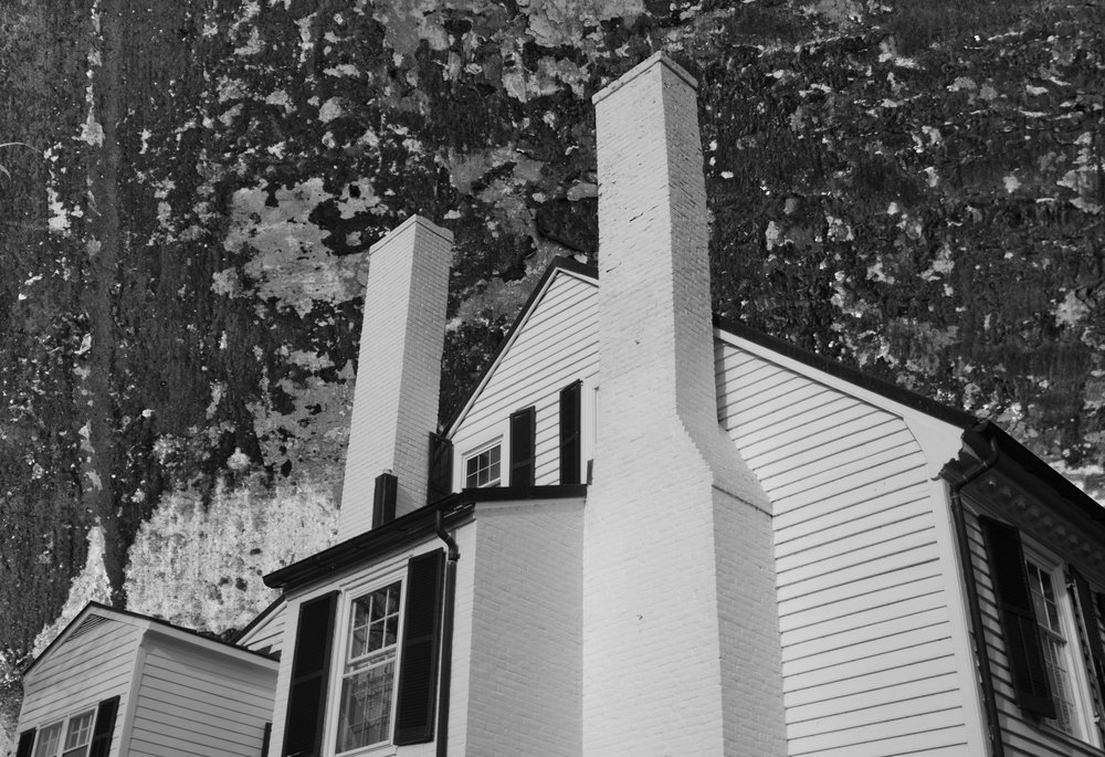 ASM_Renee Regan_VA.15-IL.14_11x14_2015_Archival Image on Aluminum_365.jpg