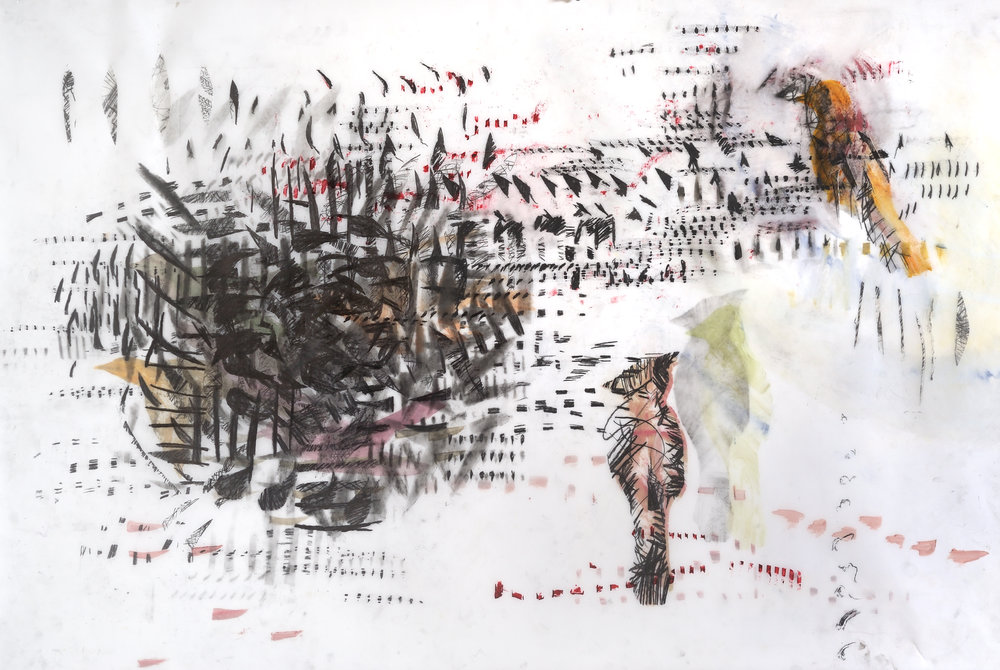 Songbirds with Echoes, 36x52_, graphite, gouache, on mylar, $1850.jpg