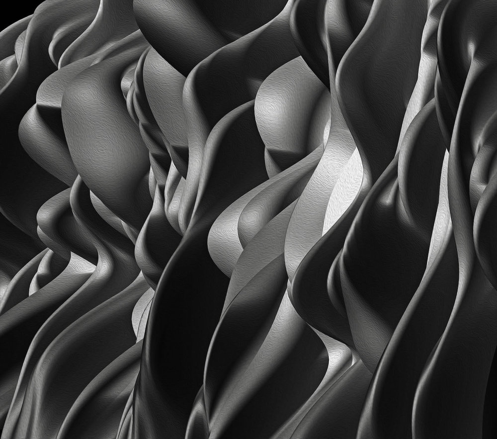 RogelioMaxwell-Romance With Shadows-2014-ArchivalPigmentPrint-24x30-$900.jpg