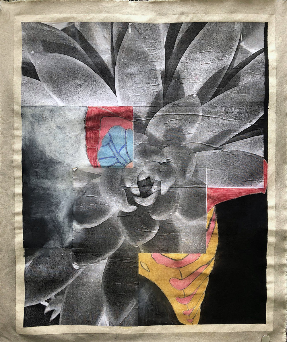 TonyMichaleEstrada - Human Nature IVa - collage on canvas_ pastels and photo prints - 45 x 36 - 2016 - $400.jpg