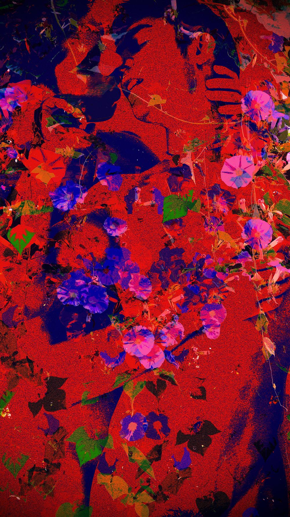 John Waiblinger-Morning_s Glory-Digital Art on paper-20.5Wx36.5-1of15-2018-Framed-$1,200.jpg