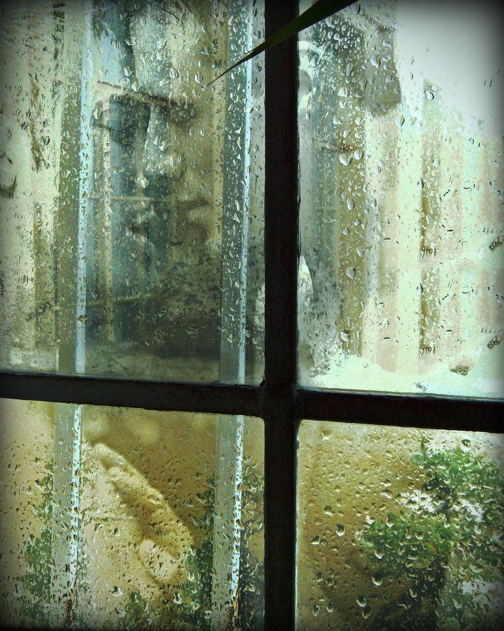 John Waiblinger-Rain Kissed-Digital Art printed on aluminum-12.75Wx16H-1of10-2012-Framed$495.jpg