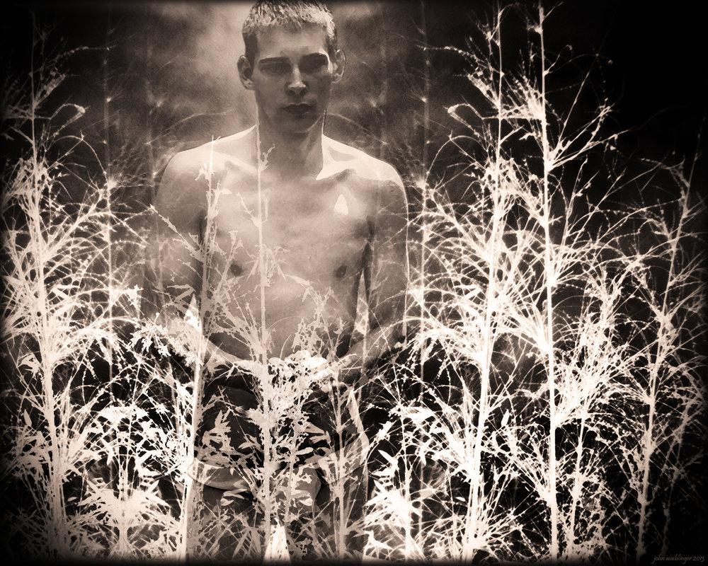 John Waiblinger-Flaming Angel-Digital-Art printed on Aluminum-20Wx16H-2012-$495.jpg