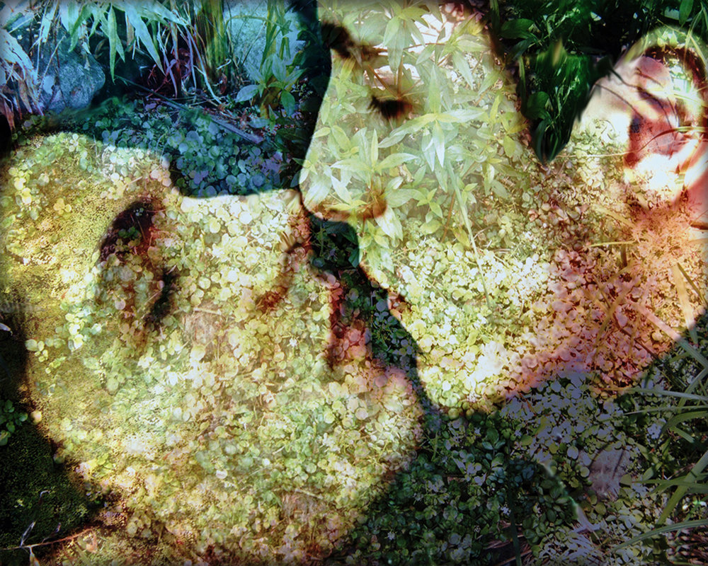 John Waiblinger-Kiss-Digital Art on paper-20x16-Ed3of10-2012 -framed$675.jpg