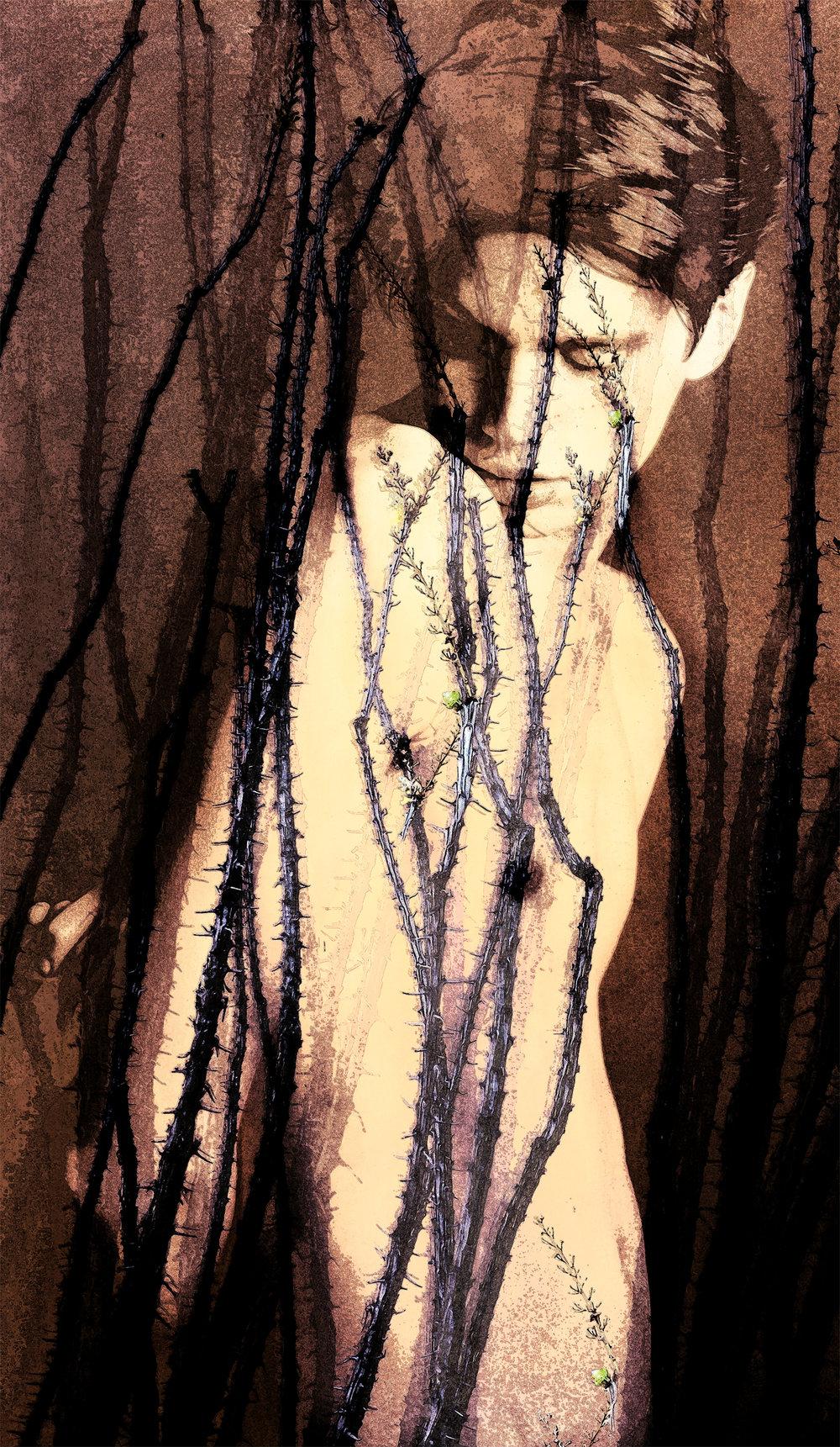 John Waiblinger-Thornbird-Digital Art on paper-21Wx36-1of5-2018-Framed-$1,200.jpg