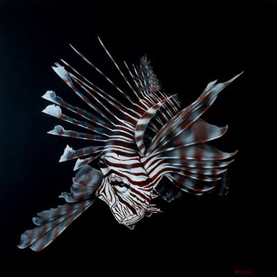 lionfish-Black-Background.jpg