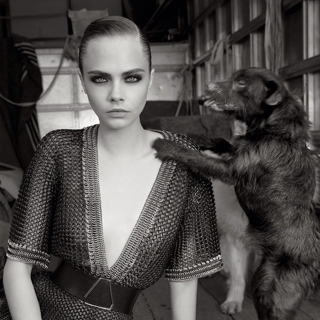 #tbt @caradelevingne for #vogueuk  #photography by @_glen_luchford #fashion #dog #terrier #caradelevingne #highfashion #blackandwhite #spring #summer #2013 #ysl #yvessaintlaurent #balmain #celine #sportmax #versace #editorial #beauty #vogue #uk ____________________________________  HOUSEtribeca.com  photo-retouching house