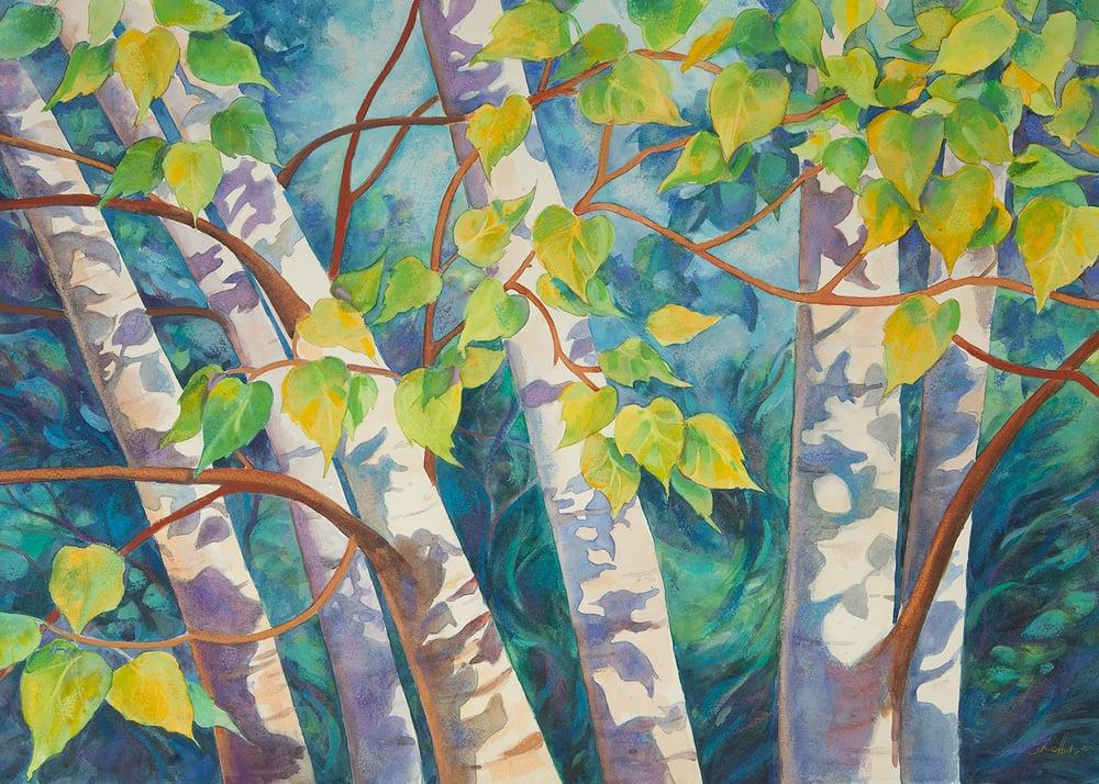 """""""Birch Leaf Shadows"""""""