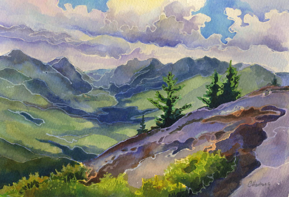 """Clouds & Cloud Shadows, Hopkins Mountain"""