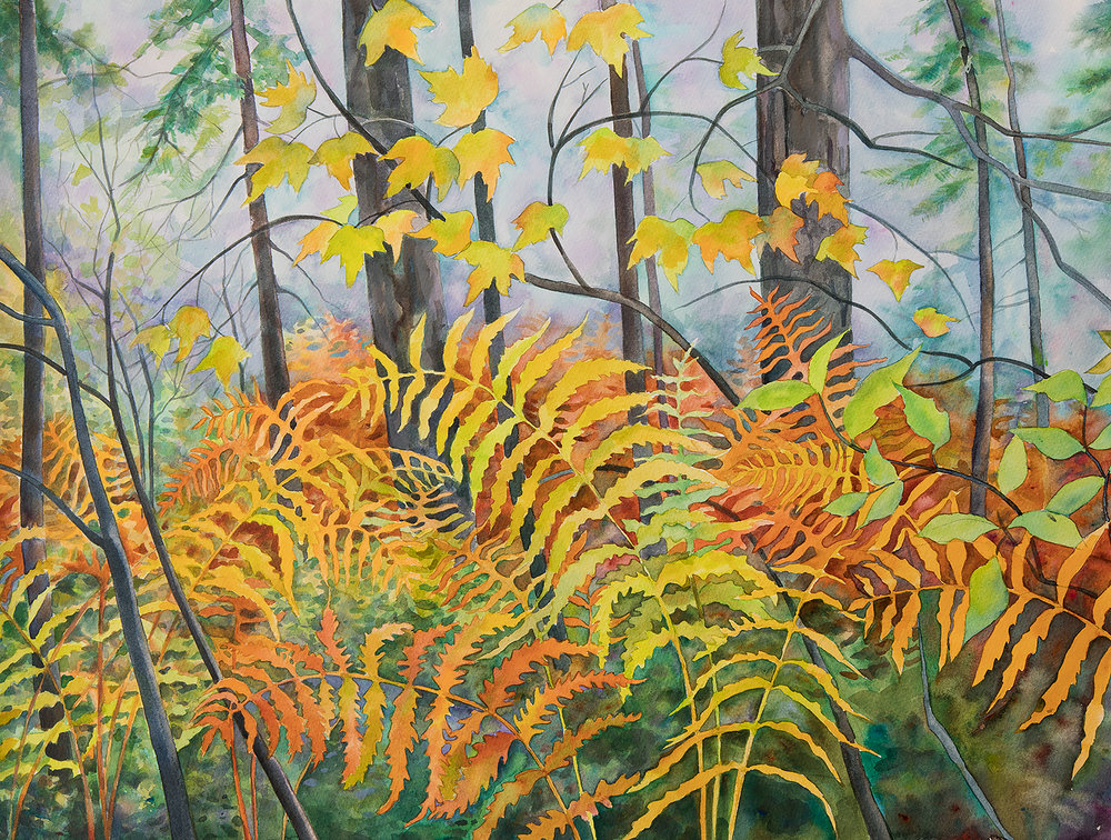 """""""Ferns at the VIC"""" (One of my new pieces which will be part of my solo exhibit at The Strand Gallery in Plattsburgh, NY)"""