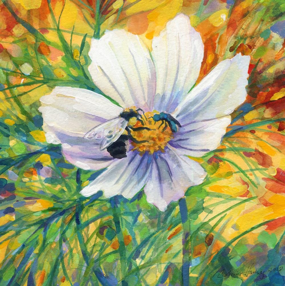 """Bee's Delight"""