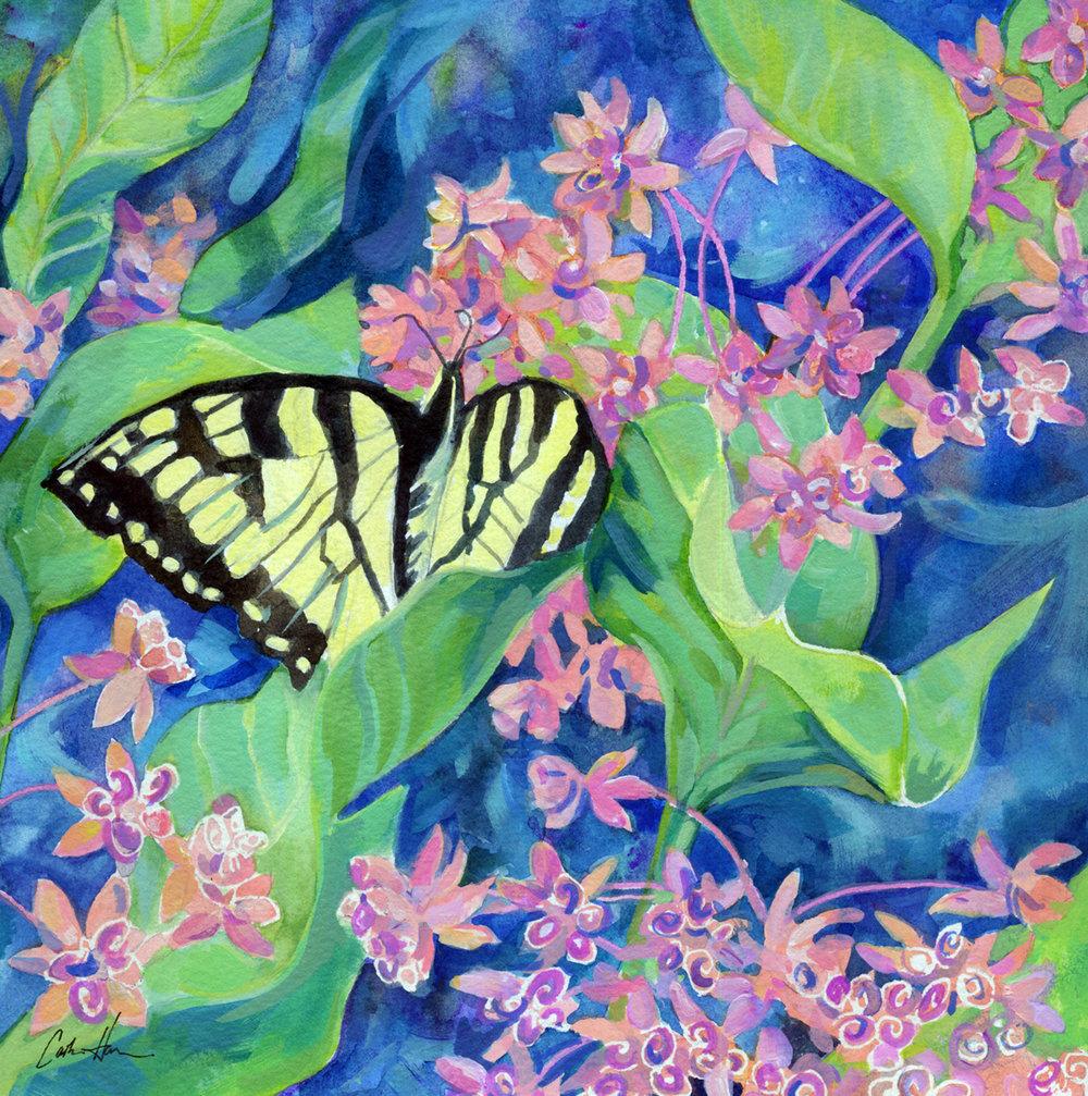 """""""Milkweed & Swallowtail"""""""
