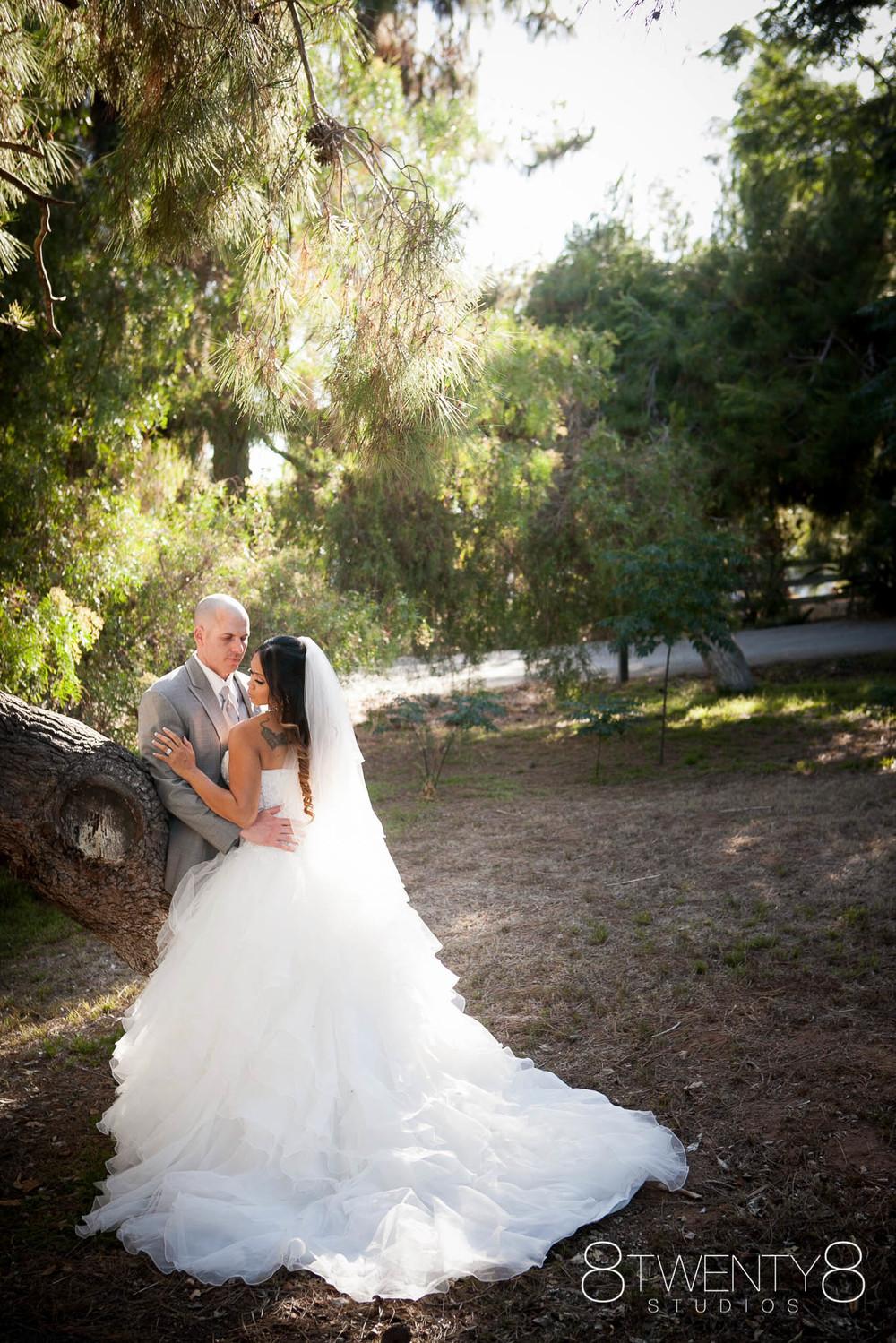 0035-150710-rhea-steve-wedding-©8twenty8-Studios.jpg