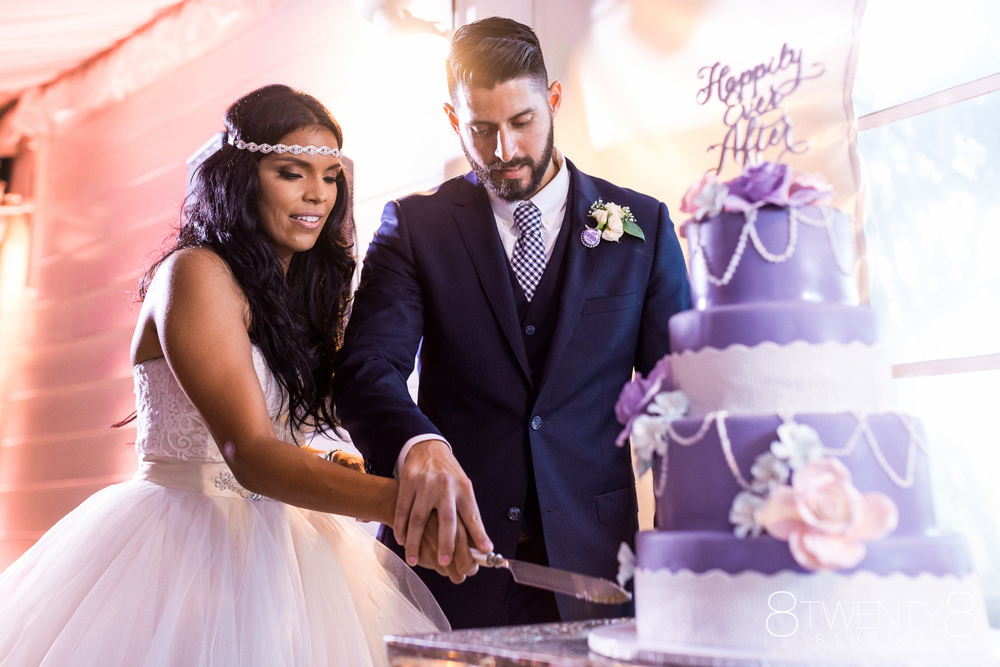0544-150807-darlene-eric-wedding-8twenty8-Studios.jpg