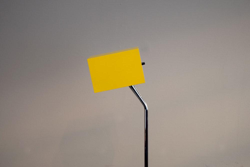 yellow_head.jpg