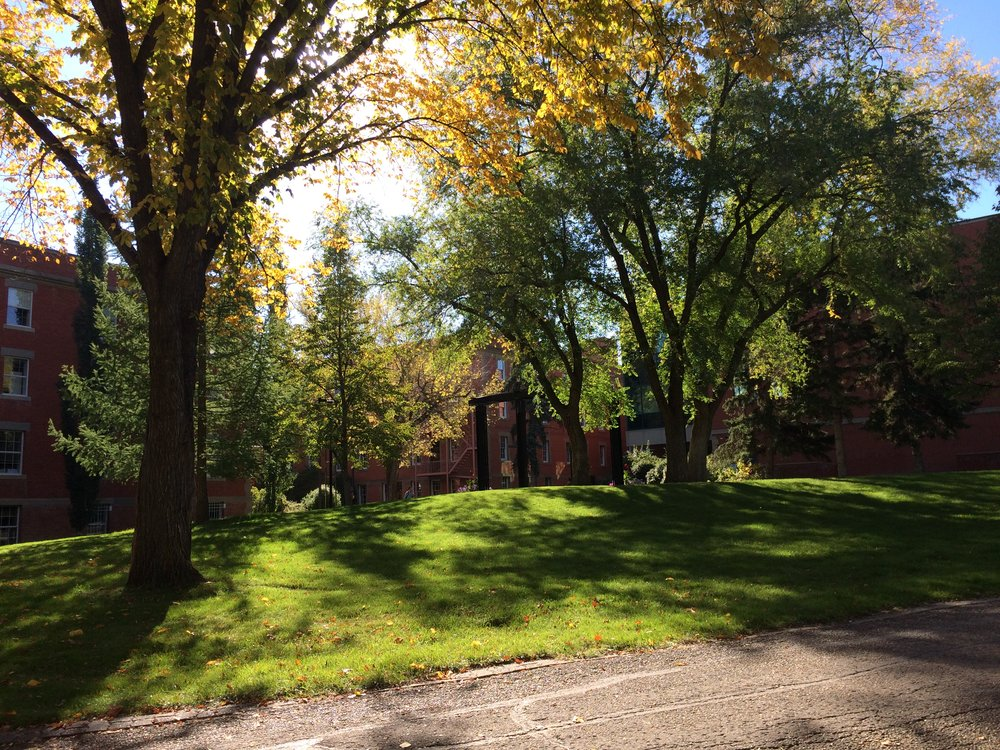 The University of Alberta campus in September!