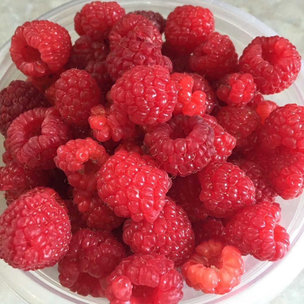 raspberries.jpg