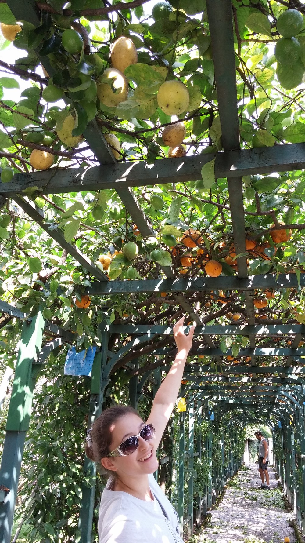This is me rescuing some urban fruit in Italy a couple years ago, photo by Denise Koufogiannakis