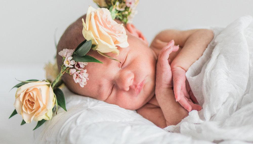 newbornbanner3.jpg