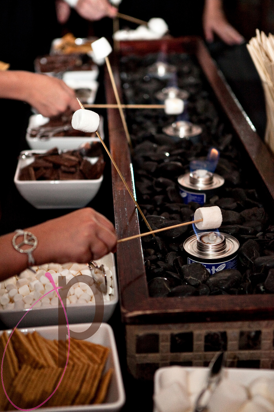 Wedding s'mores buffet (Jolynne Photography)
