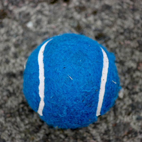 Kids tennis starts with our Blue.Tennis classes.