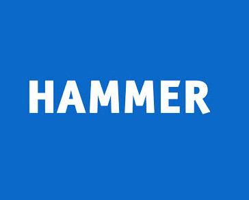 Hammer Museum Logo.jpg
