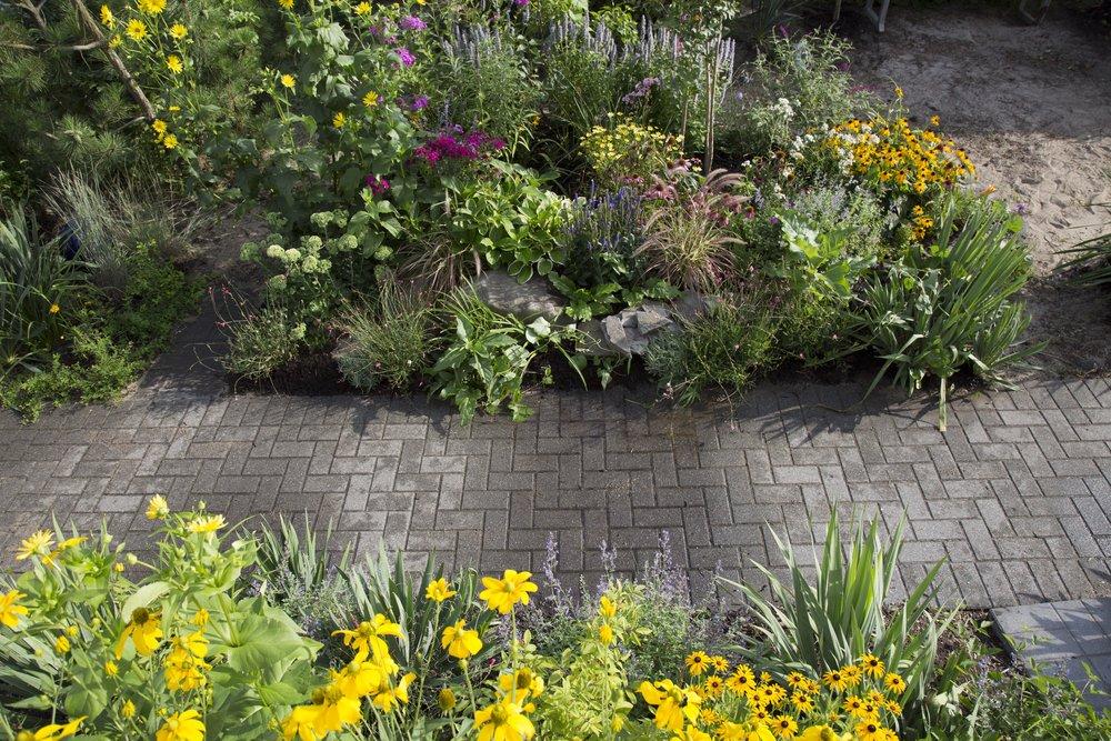 charlotte raised bed garden design