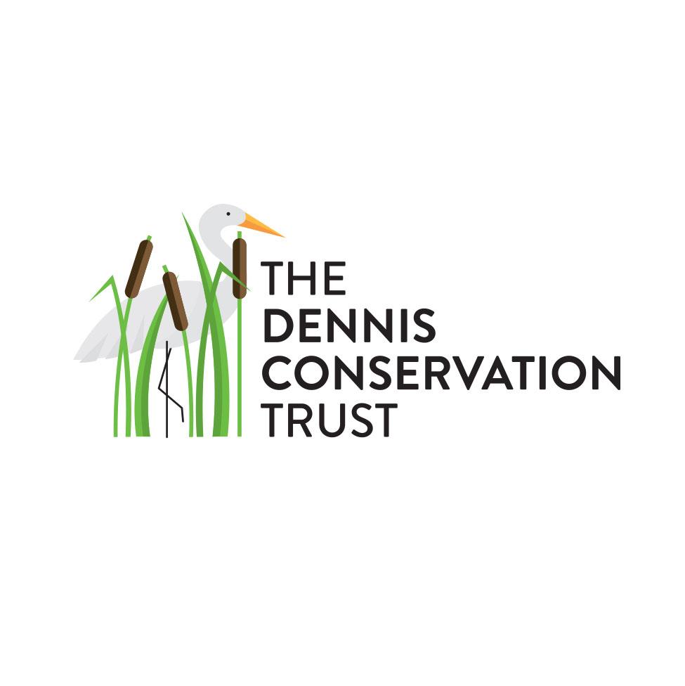 DCT_logo2.jpg