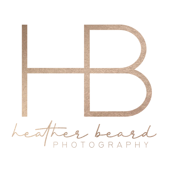 heather beard photography