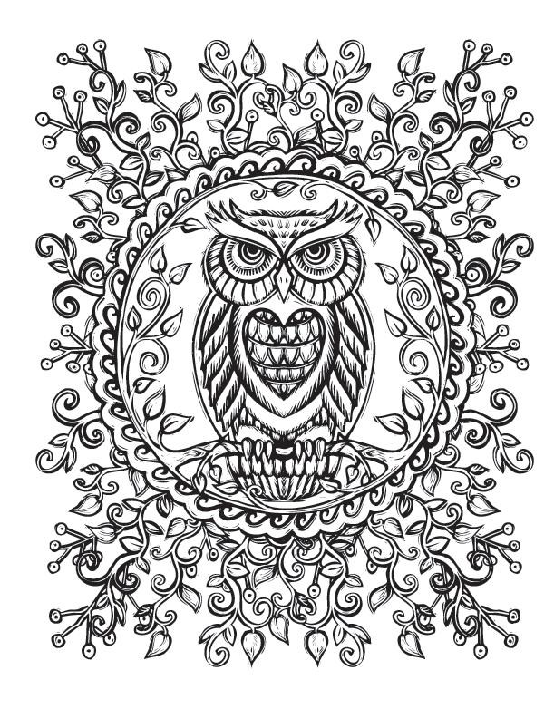 Sacred Nature A Coloring Booklydia Hess Illustration