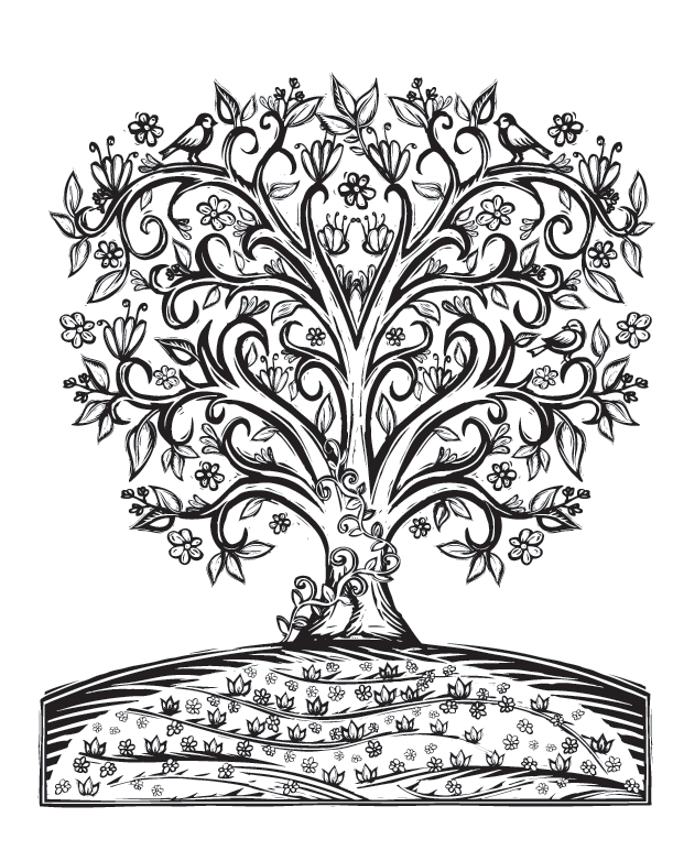sacred nature coloring book lydia hess illustration sacred