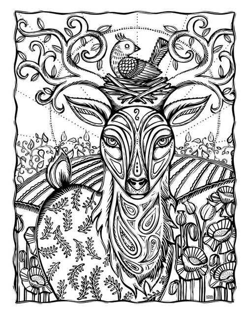 Sacred Animals Coloring book — Lydia Hess Illustration & Design