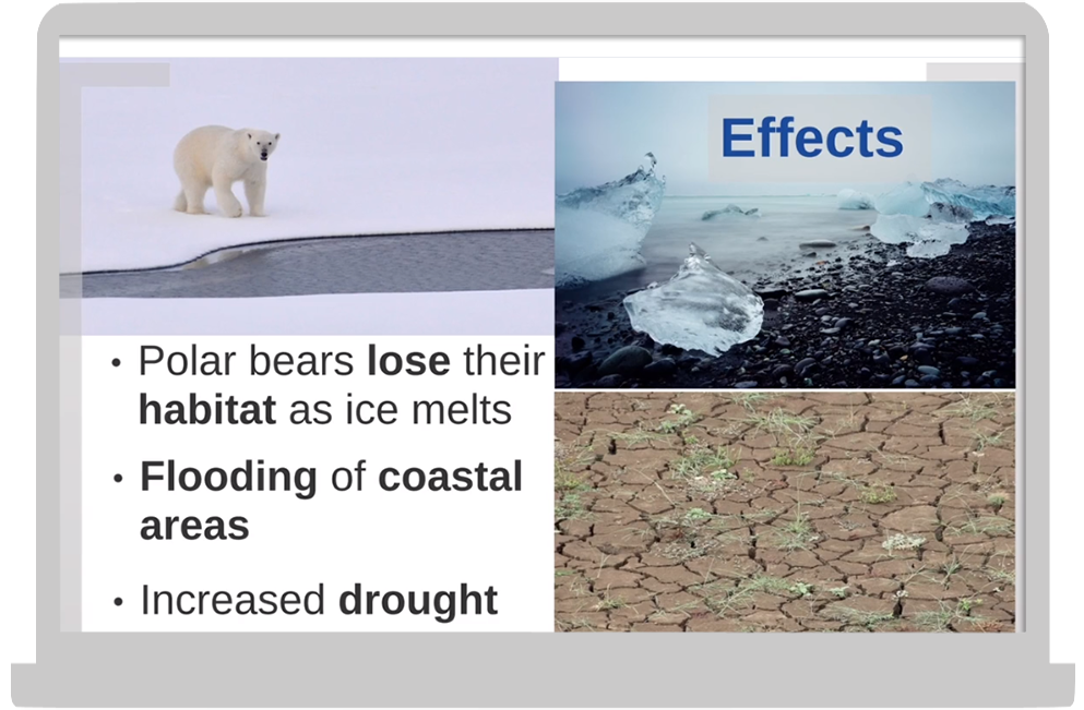 ecosystem science 2.png