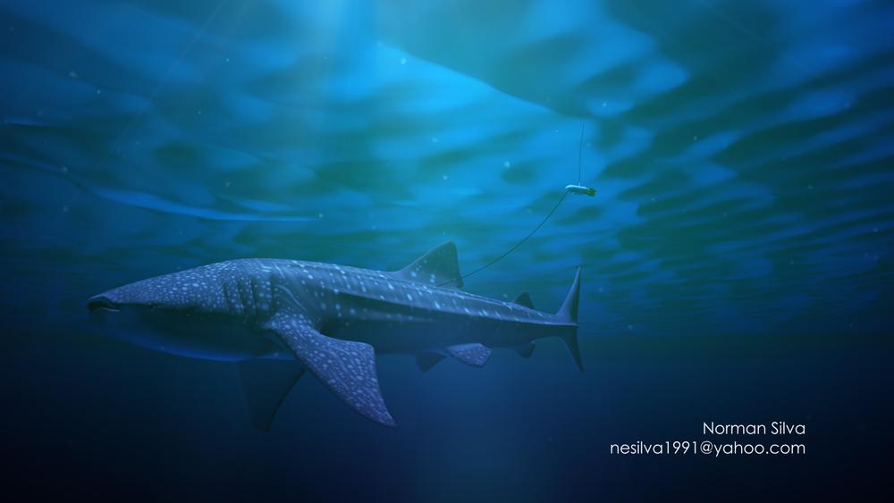 Thumb-Whaleshark.jpg