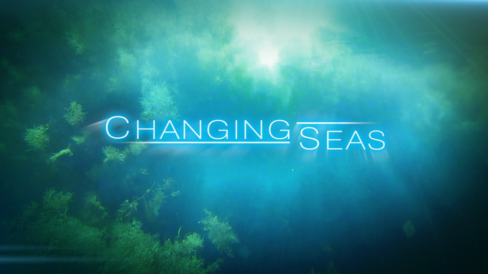 Motion Graphics-Changing Seas.png